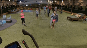 Big Brother 16 Backyard