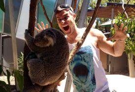 Jeff surprises a koala