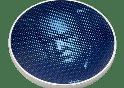 Winston Churchill Memorial Trust Medal