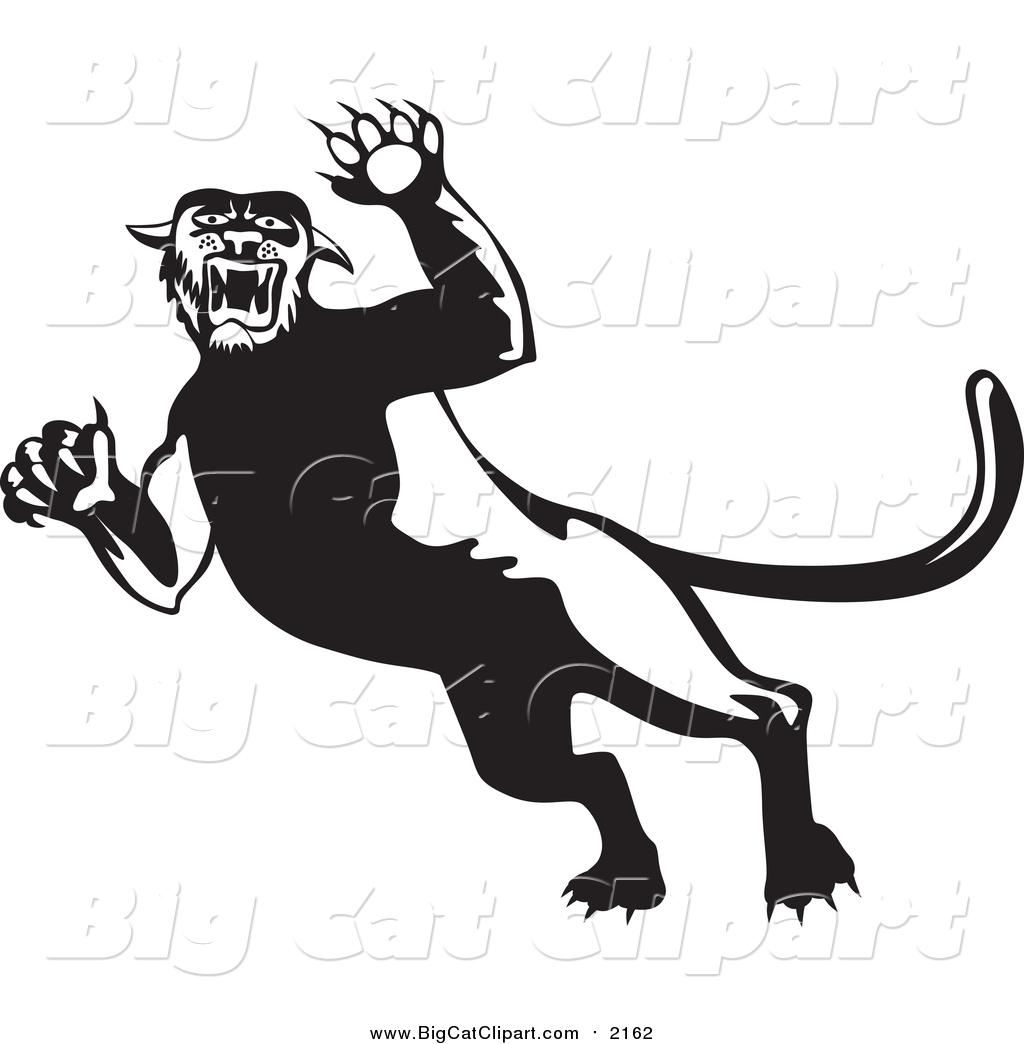 Big Cat Clipart
