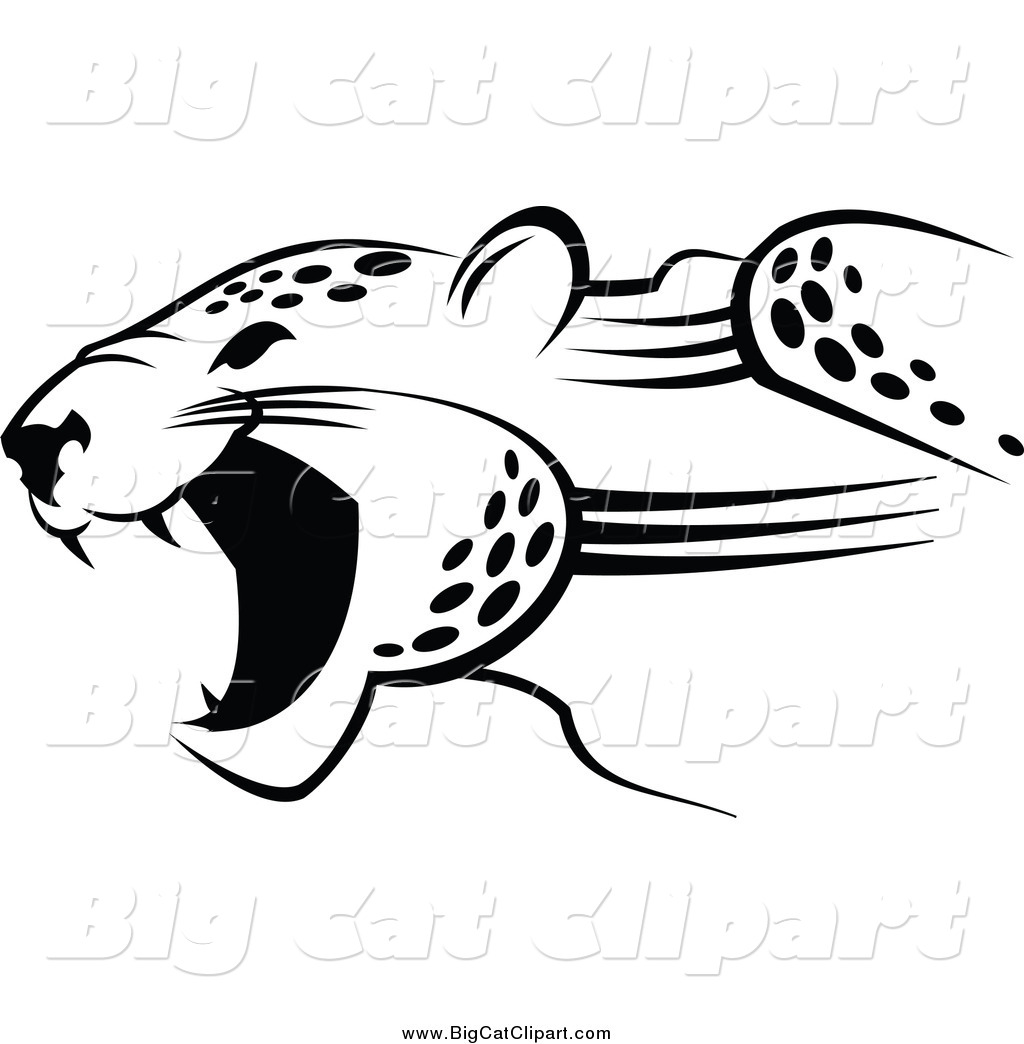 Big Cat Vector Clipart Of A Black And White Jaguar By