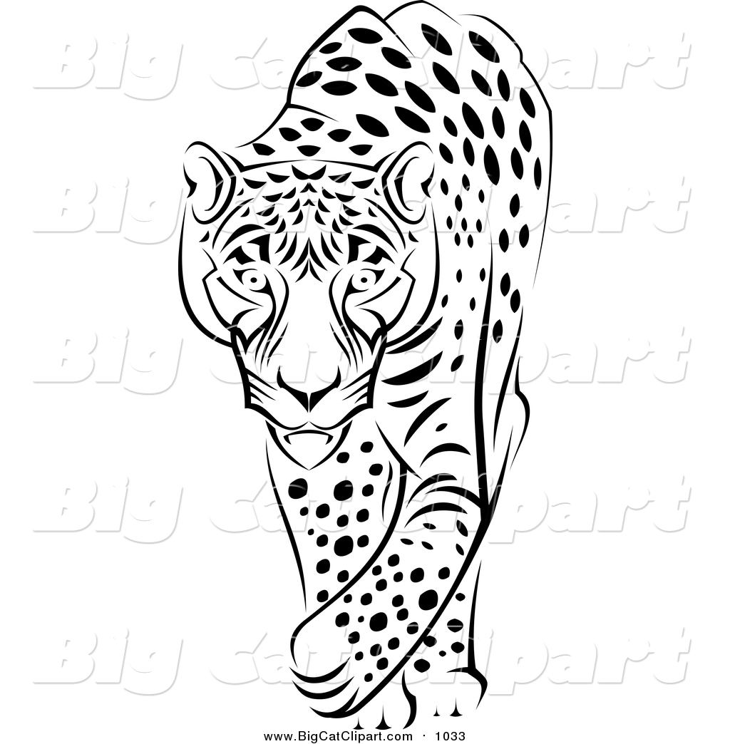 Jaguar Clipart Black And White