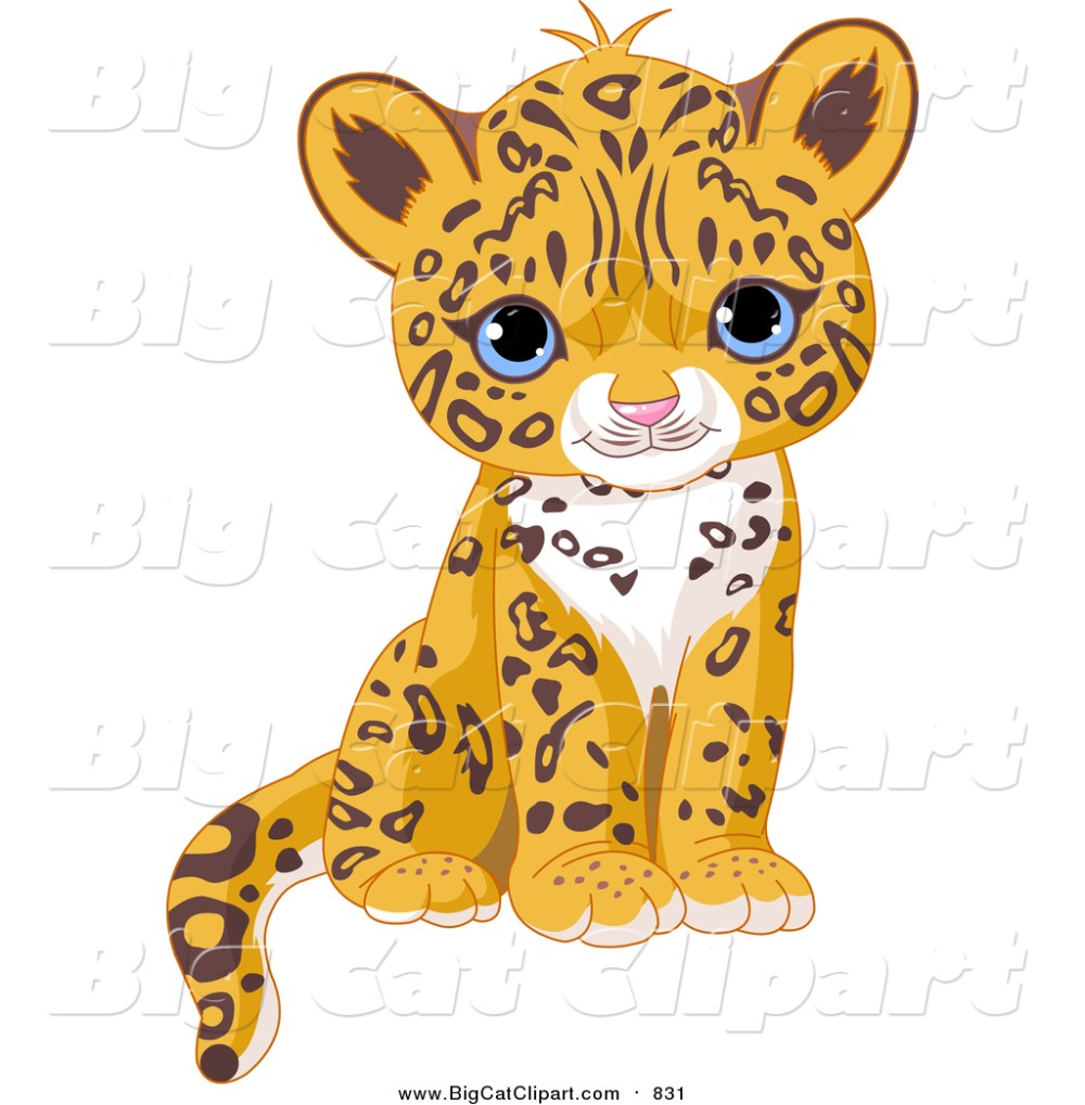 medium resolution of big cat vector clipart of a cute blue eyed jaguar cub sitting