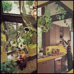 Vinyl Wallpaper Kitchen Backsplash Old Sink With Drainboard 1970s Kitchens In Warm Autumn Tones