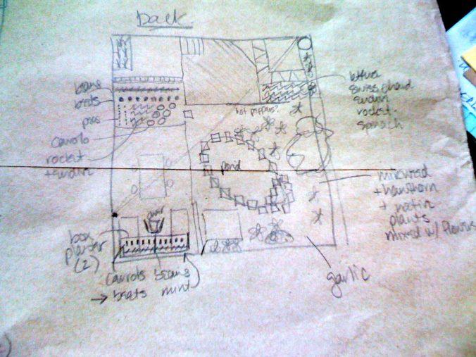 Back yard plans