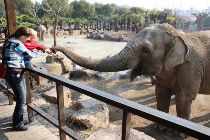 bigcitymums_zoo