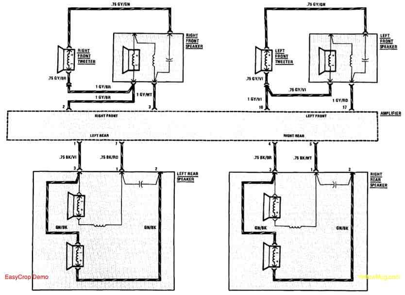 Bmw E46 Speaker Wiring Diagram