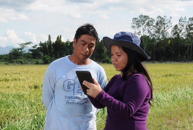 RiceFocus: Scaling Crop Advisory Services to Smallholders