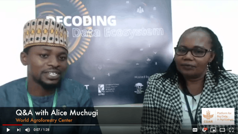 Q&A with Alice Muchugi from the ICRAF