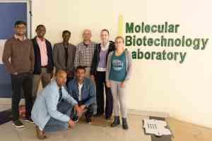 MARPLE Diagnostics: A Pioneering Step in Ethiopian Wheat Rust Management