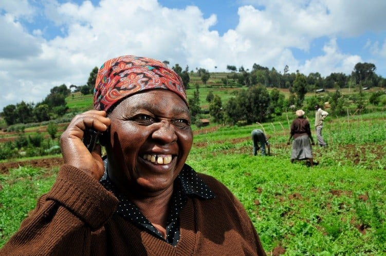 Big data partnership: CGIAR analytics meets IVR to bring tailored advice to Malawi farmers