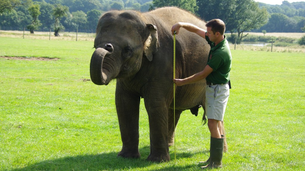 Hadoop Sizing –  A Basic Capacity Approach