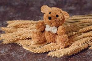 (Duncan the ) Straw (bear)