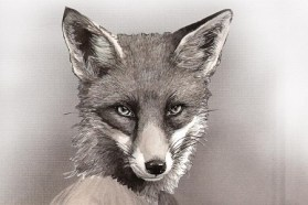 crafty-fox-spring-market-br
