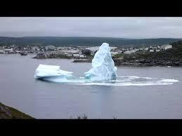 iceberg and calf