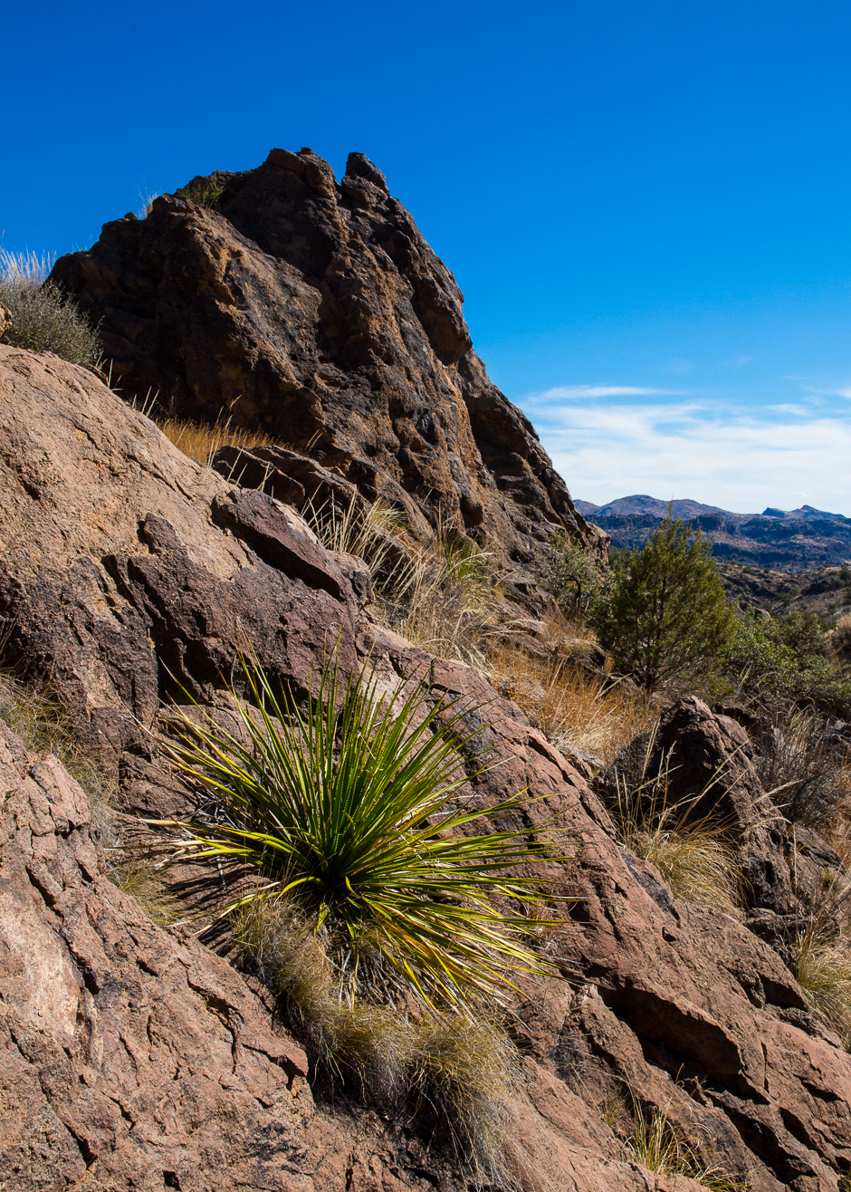 Chihuahuan Desert  Into the Mystic  Travels  Photography
