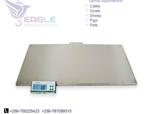 Large platform electronic dog pet scale,animal scale,postal scale
