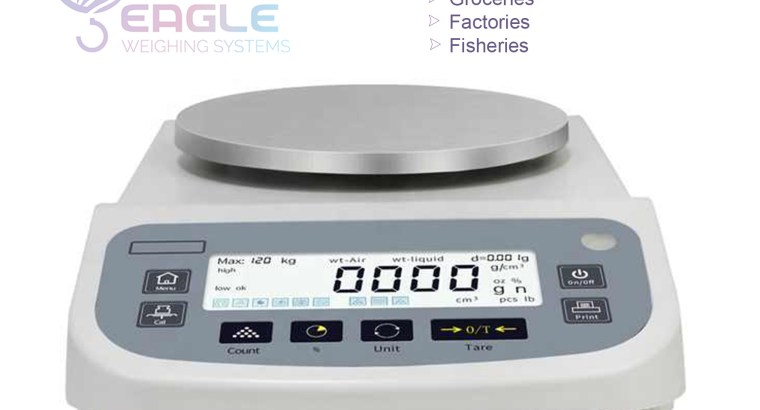 Accurate household bathroom weighing scales