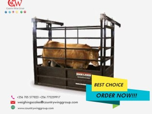 What is the price of Galvanized weigh beams for cattle that last long in Kampala Ugand