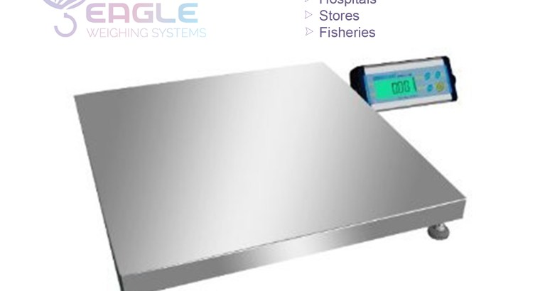 Industry platform floor weighing scales