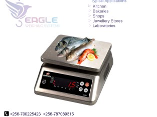 10kg Household Kitchen Scales