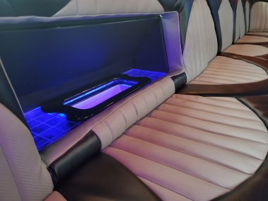 20190516 173109 - 18 Passenger<br>450 Party Bus</br>Limo #28