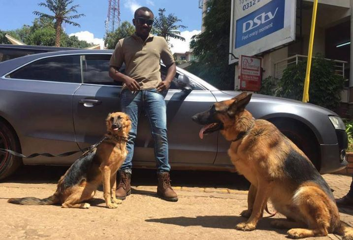 Abryanz named the new brand face for Kaisha Dog Trainers Uganda.
