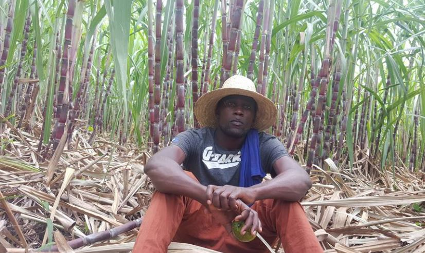 Kavuma Dauda in his sugarcane plantation