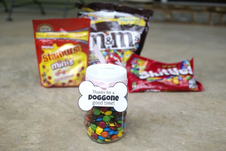 Thanks for the Doggone Good Time DIY Hostess Gift for dogs and their owners