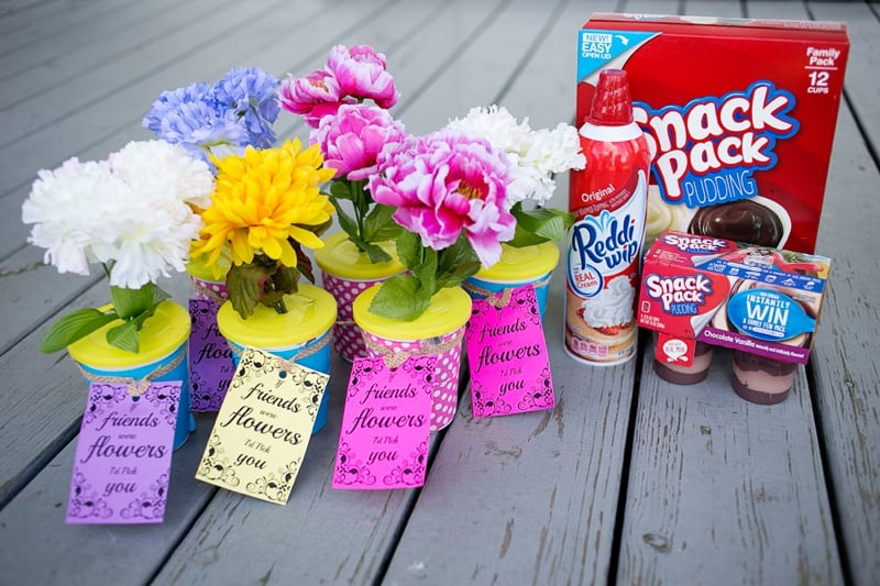 DIY Flower Pot Walking Taco Snack Supplies