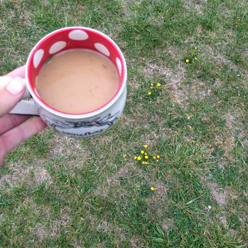 Yep, that's grass in my coffee. One of the big kids had a mower issue. I set my coffee down to help, then forgot about it when we got back to work.