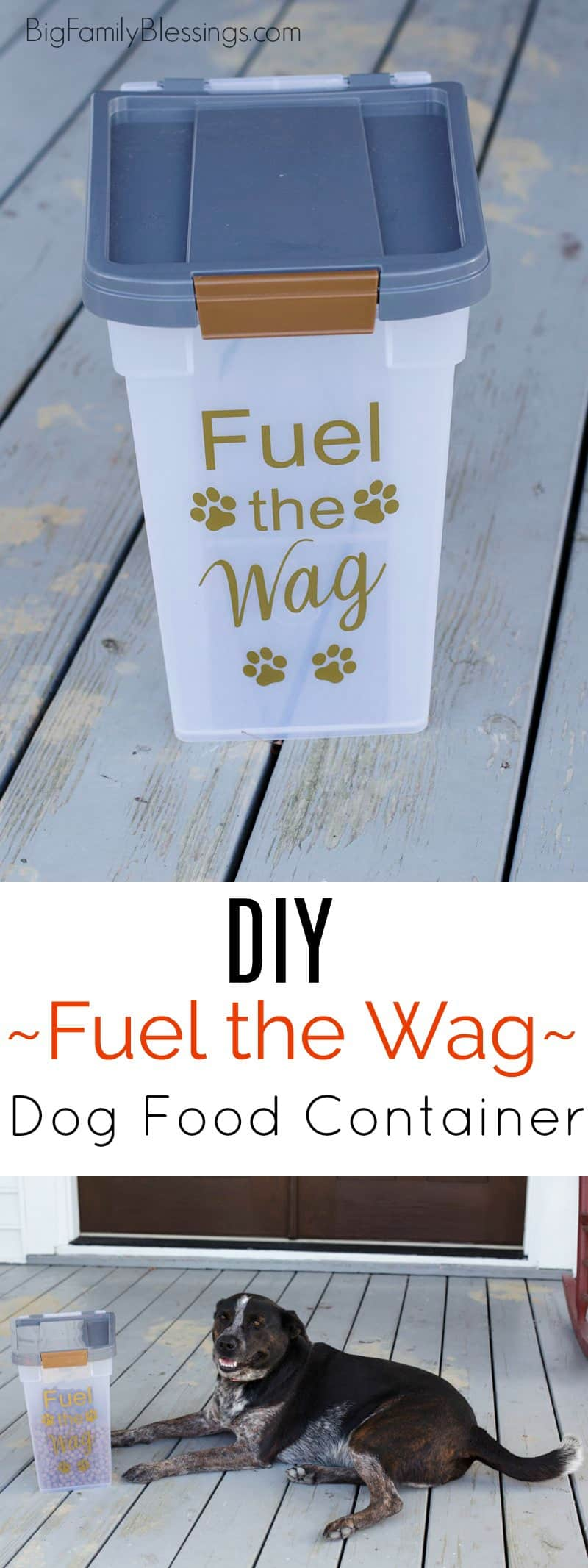 DIY Fuel the Wag Dog Food Container