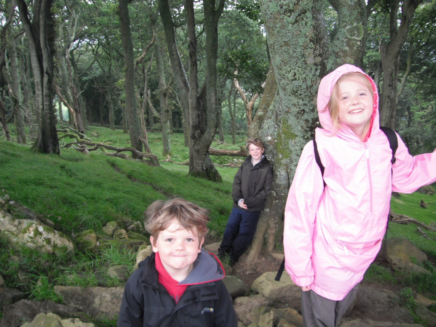 Neva, kaide and Lochlan smiling on their woodland walk