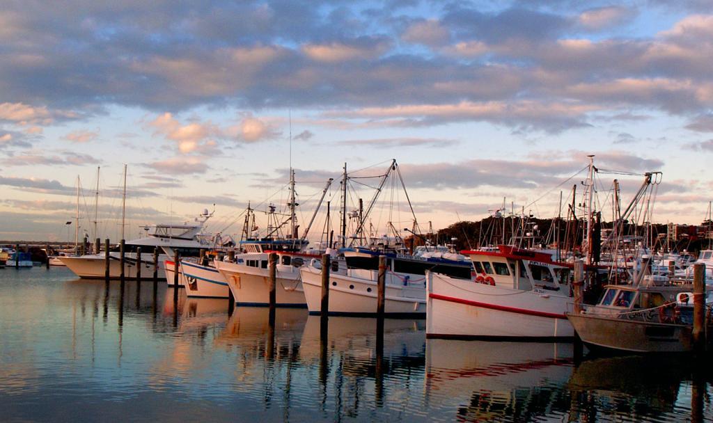 Port Stephens Sydney
