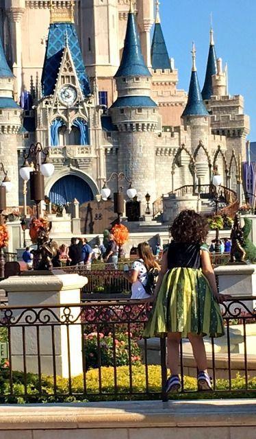 Remembering Disney World