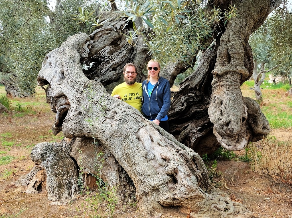 "Standing ""inside"" a 1,000 year old olive tree in Puglia"