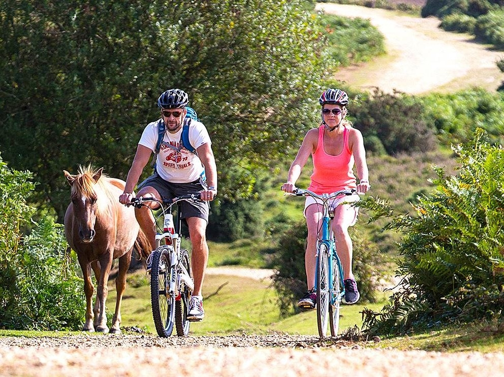 Two cyclists enjoying The New Forest
