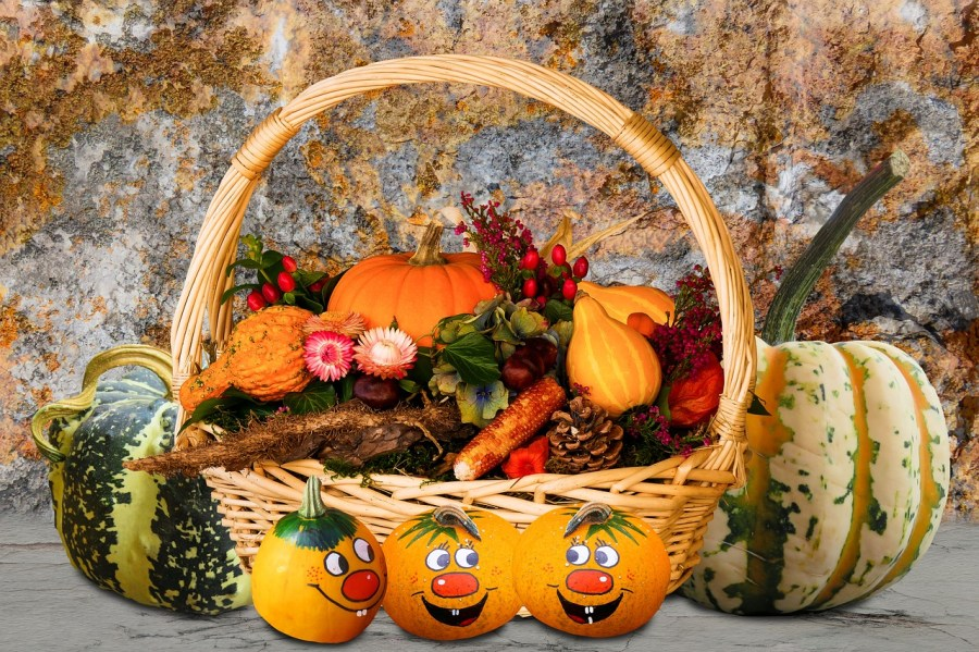 Harvest Celebrations