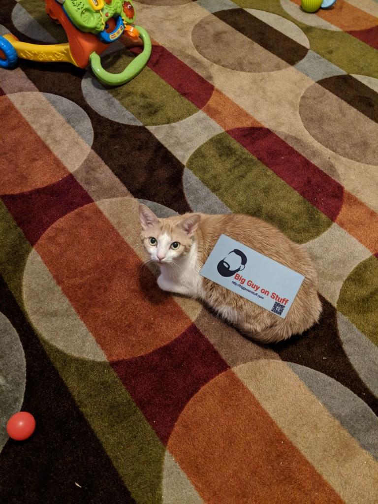 Big Guy Sticker on a Cat