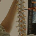 bhl_spinalcordinjuries_interior_v1-1