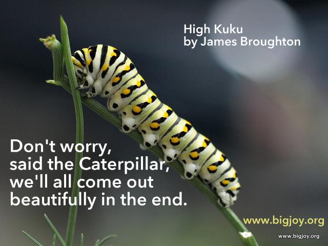 Caterpillar High Kuku by James Broughton pic bytinkerbrad