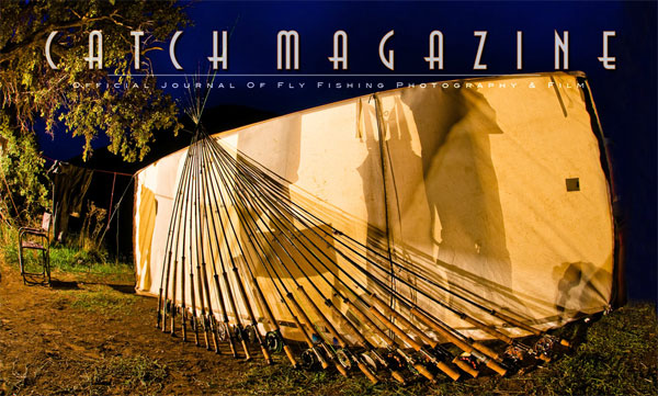 Catch Issue 19