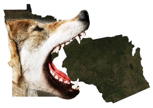Wisconsin senate passes wolf hunting bill big kype for Minnesota non resident fishing license cost