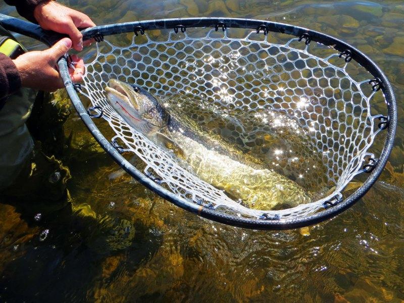 Fly Fishing Lake Trout on Lake Superior