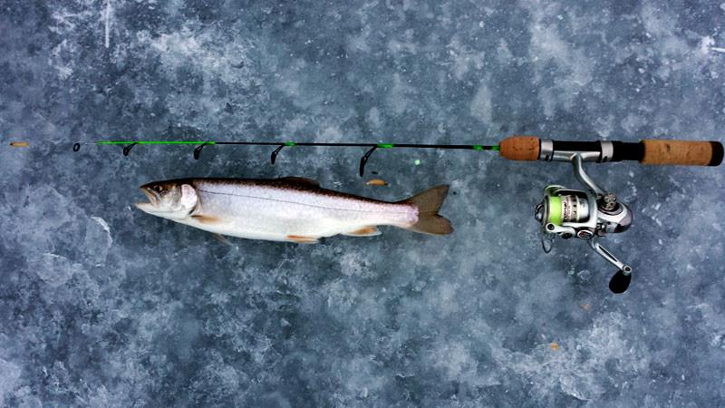 Ice Fishing Chequamegon Lake Superior Splake Trout