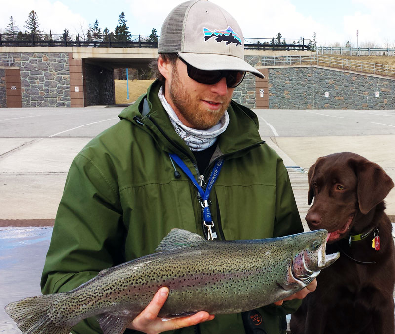 fly fishing rainbow trout on Lake Superior