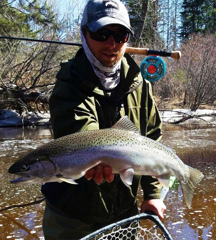 fly fishing steelhead lake superior tributary