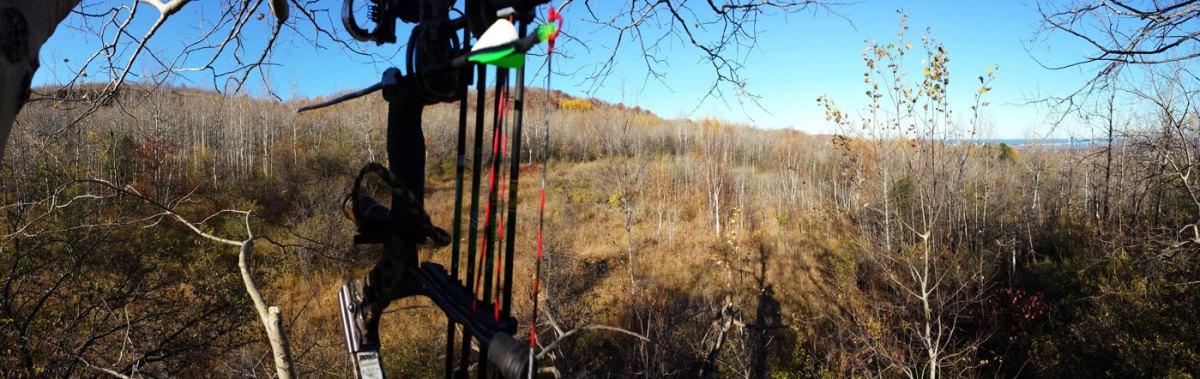 Bowhunting Deer Minnesota