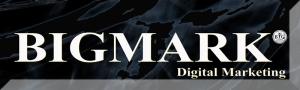 BIGMARK Digital Marketing Logo