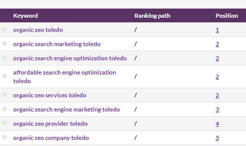 SEO services, SEO Company, SEO Toledo